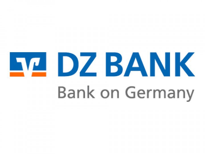 DZ Bank - referencja Informatica
