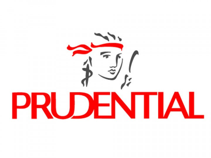 Prudential - referencja Informatica